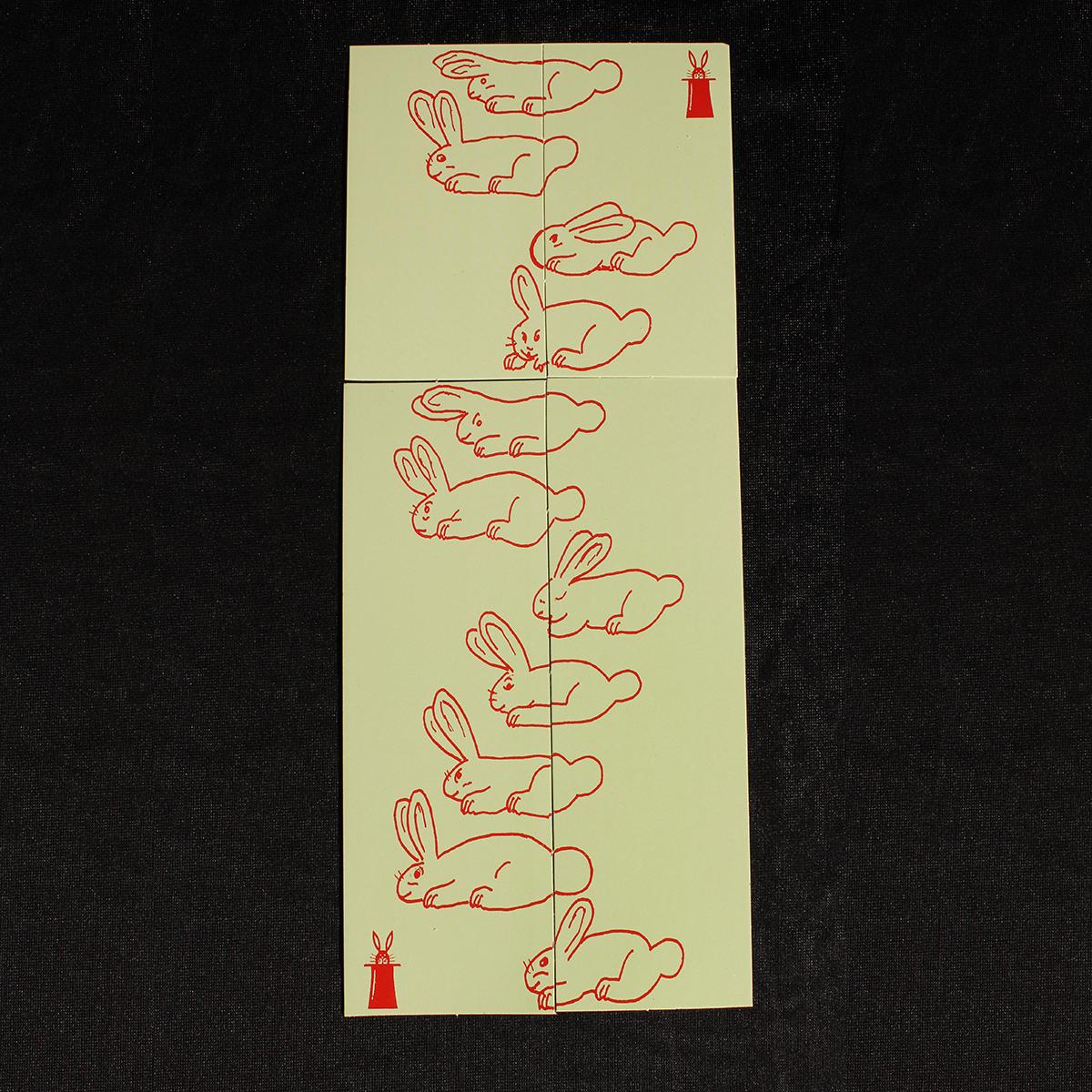 R0010-puzzle-conills-2