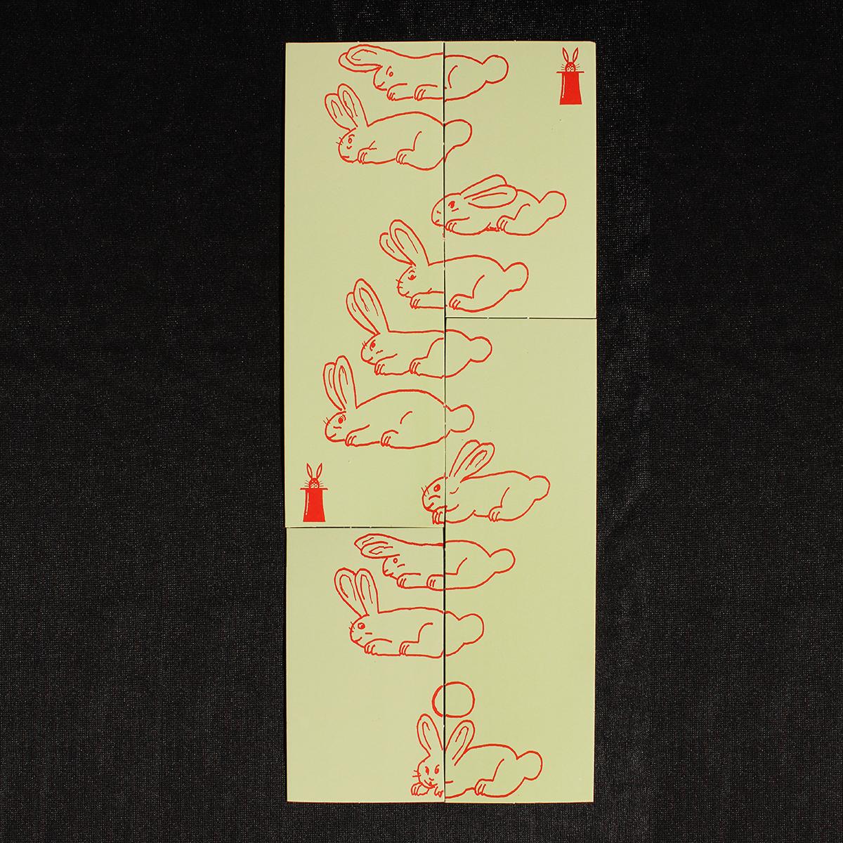 R0010-puzzle-conills-3