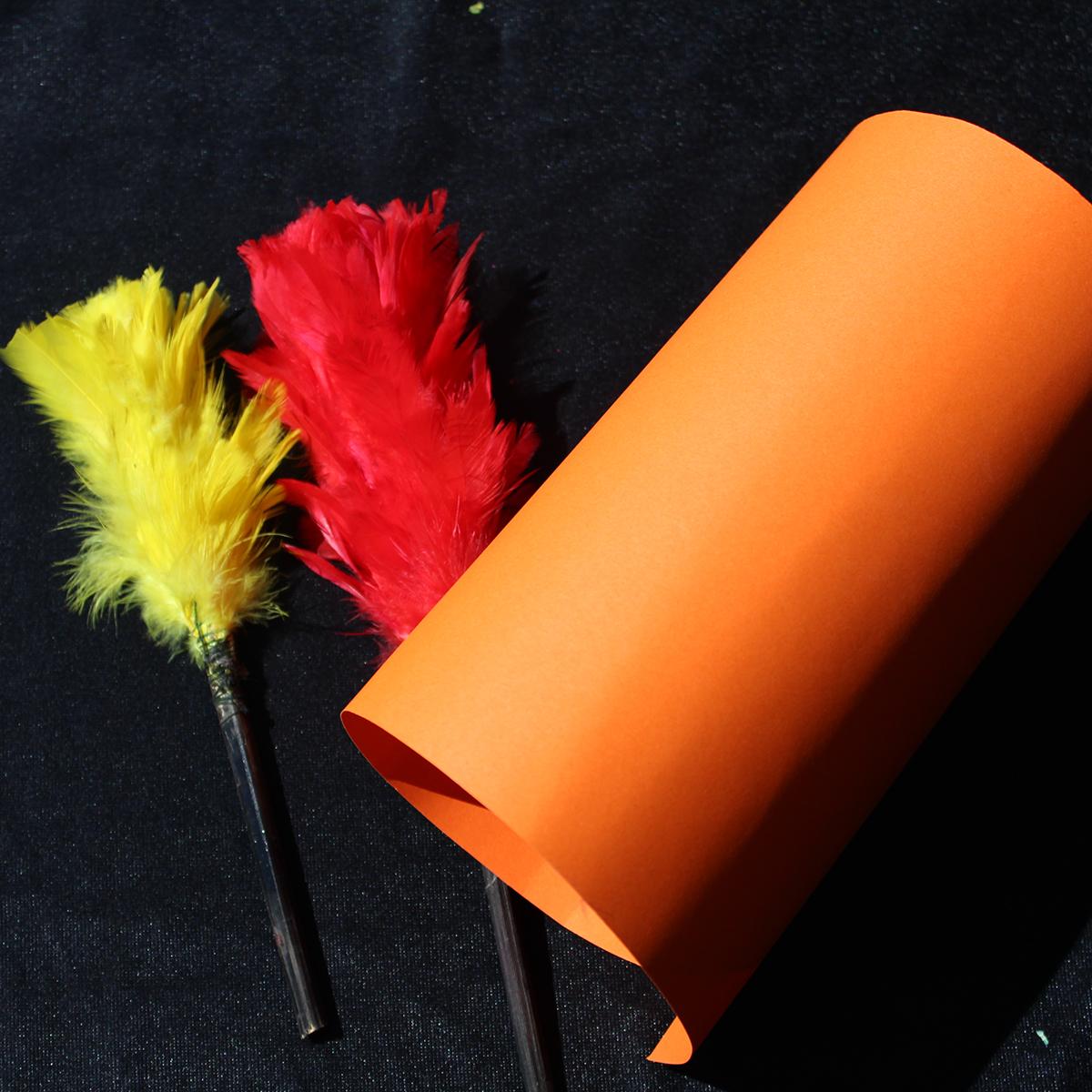 R028-Plumeros-colores-(7)